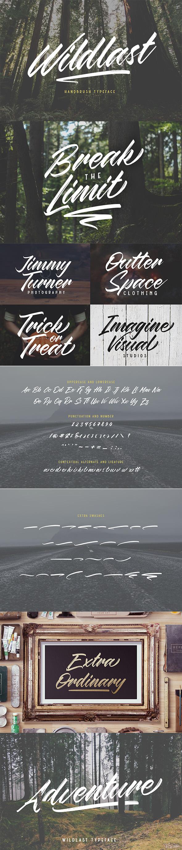 Wildlast Handbrush Typeface - Calligraphy Script