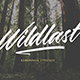 Wildlast Handbrush Typeface - GraphicRiver Item for Sale