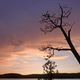 Dramatic Sunset in the North Woods - PhotoDune Item for Sale