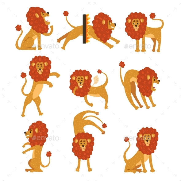 Collection of Lion in Various Poses - Animals Characters