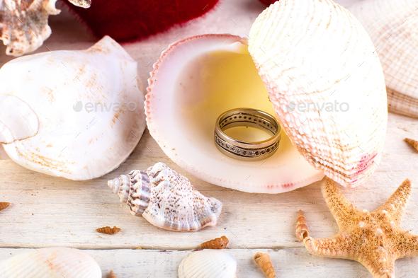 Engaged ring seashell - Stock Photo - Images
