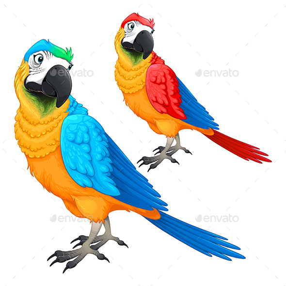 Parrots in Two Different Colors - Animals Characters
