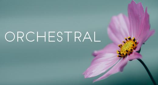 Orchestral - Stardiva