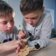 Two Boys Are Finishing Their Wooden Drone Model - VideoHive Item for Sale