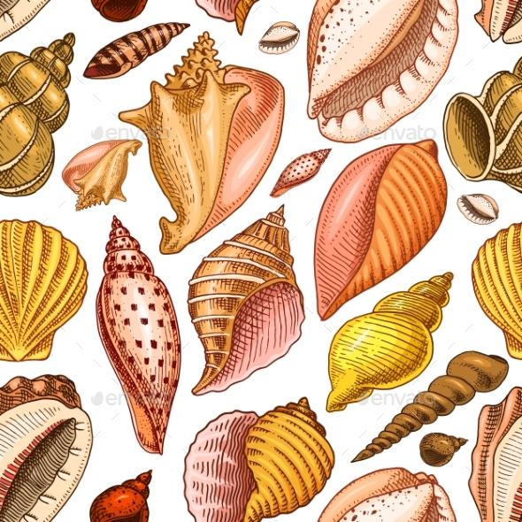 Seamless Pattern of Shells - Backgrounds Decorative
