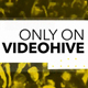 Summer party Event - VideoHive Item for Sale