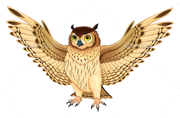 Owl with Opened Wings - Animals Characters