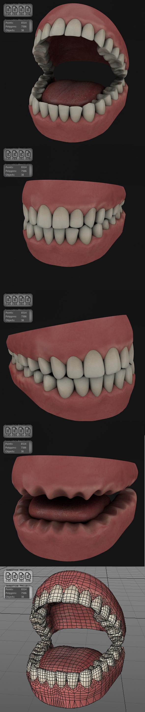 Teeth & Gums - Full Design - 3DOcean Item for Sale