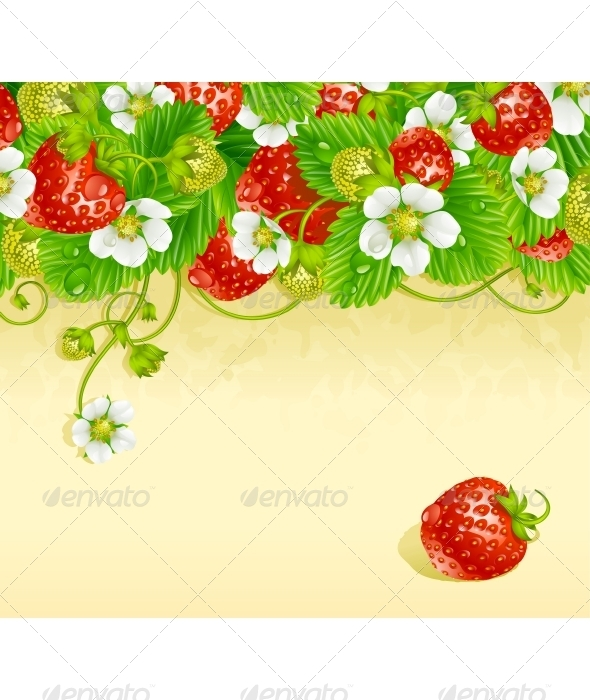 Strawberry Frame - Flowers & Plants Nature