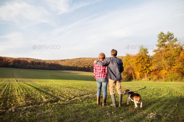 Senior couple with dog on a walk in an autumn nature. - Stock Photo - Images