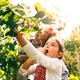 Senior couple with grandaughter gardening in the backyard garden - PhotoDune Item for Sale