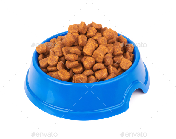Pet food on white - Stock Photo - Images