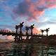 Fantastic Bridge At Sunset - VideoHive Item for Sale