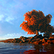 Tree In Autumn Weather - VideoHive Item for Sale
