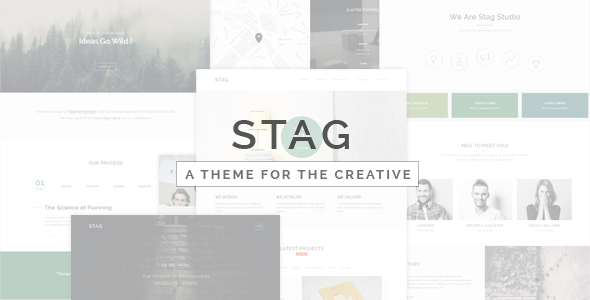 Stag - Portfolio Theme for Freelancers and Agencies