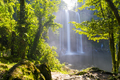 Misol Ha Waterfall Jungle Path - PhotoDune Item for Sale