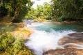 Rainforest Waterfalls Of Agua Azul - PhotoDune Item for Sale