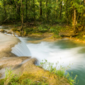 Rainforest Waterfall - PhotoDune Item for Sale