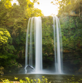 Misol Ha Waterfall Palenque - PhotoDune Item for Sale