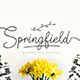 Springfield Fontduo - GraphicRiver Item for Sale