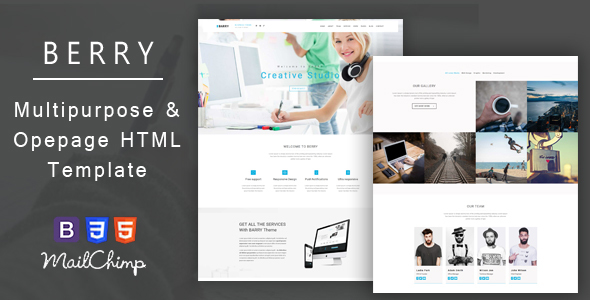 Barry – Business And Corporate Responsive HTML Template - Business Corporate