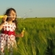 A Child with Soap Bubbles on a Wheat Field. - VideoHive Item for Sale