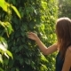 Shot of Young Woman Visiting a Pepper Farm on Phu Quoc Island Vietnam - VideoHive Item for Sale