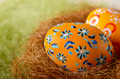 Painted easter eggs in the nest on green background - PhotoDune Item for Sale