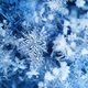 Real ice crystals after snowfall - PhotoDune Item for Sale