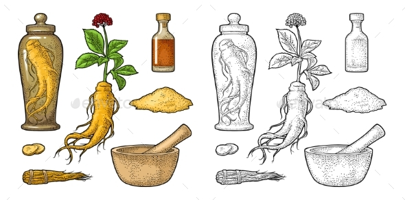 Root and Leaves Panax Ginseng - Flowers & Plants Nature
