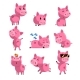 Set of Pig in Different Actions