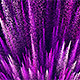 Purple Particle Background - VideoHive Item for Sale