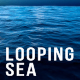 Looping Sea - VideoHive Item for Sale