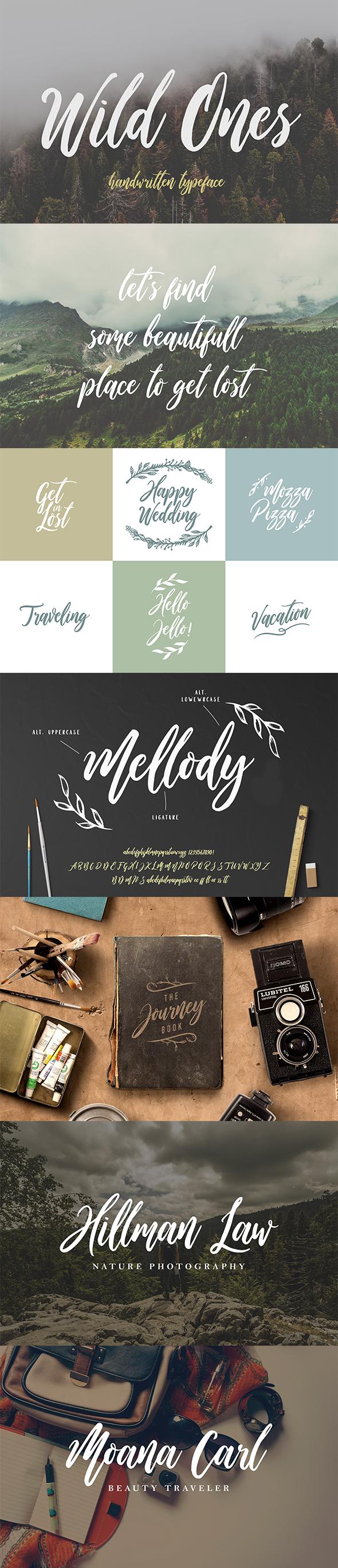 Wild Ones - Calligraphy Script