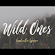 Wild Ones - GraphicRiver Item for Sale