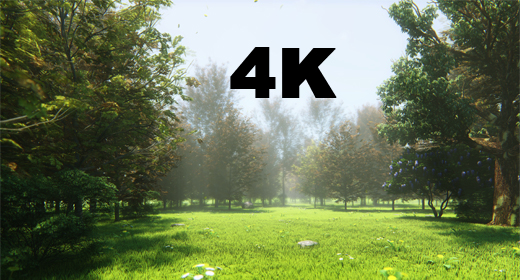 4K COLLECTION