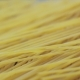 Raw Uncooked Spaghetti Falling in Italian Pasta - VideoHive Item for Sale