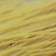 Raw Uncooked Spaghetti Falling in Italian Pasta - VideoHive Item for Sale