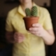 Woman Florist Hand Holding Cactus in Pot at Home - VideoHive Item for Sale