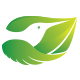 Leaf Bird Nature Logo