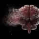 Exploding brain - PhotoDune Item for Sale