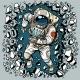 Astronaut Breaks the Wall, Leadership