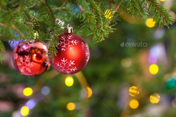 Fresh Christmas Trees.Two Red Balls On Fresh Fir Christmas Tree Twig