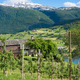 Hardangerfjord in Norwegian countryside in spring - PhotoDune Item for Sale