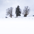 a snow covered landscape with three huts - PhotoDune Item for Sale