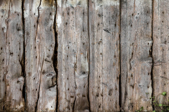 Old Wood Background Stock Photo By