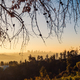 Los Angeles skyline at sunrise with trees in foreground, California - PhotoDune Item for Sale