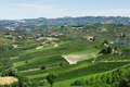 Green countryside with vineyards in Piedmont, Italy - PhotoDune Item for Sale