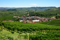 Barolo medieval town in Piedmont with vineyards, Italy - PhotoDune Item for Sale