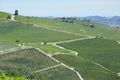 Vineyards in Piedmont in a sunny day, Unesco heritage in Italy - PhotoDune Item for Sale